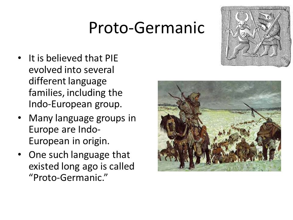 Proto-Germanic It is believed that PIE evolved into several different language families, including the Indo-European group.