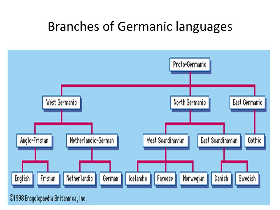 Branches of Germanic languages