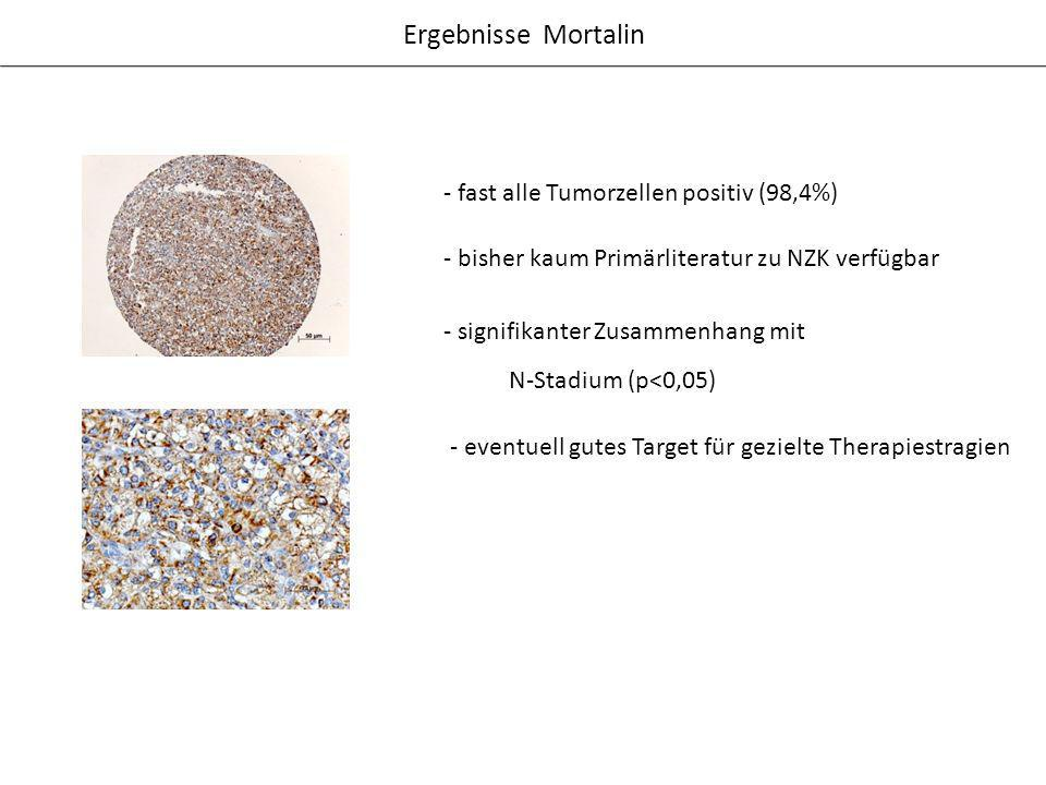 Ergebnisse Mortalin - fast alle Tumorzellen positiv (98,4%)