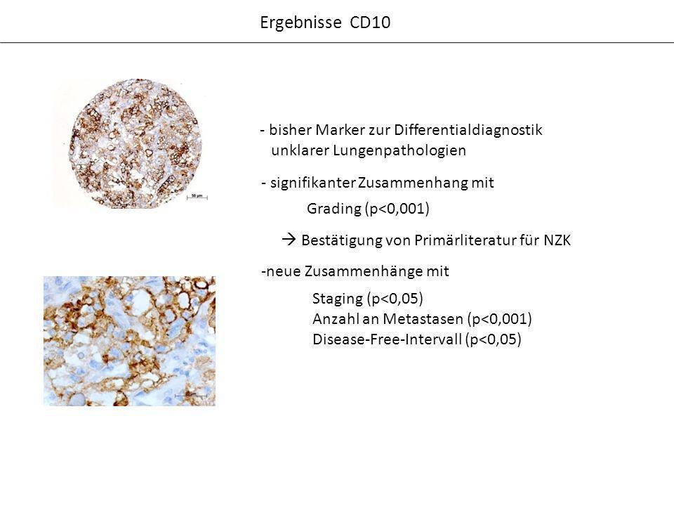 Ergebnisse CD10 - bisher Marker zur Differentialdiagnostik