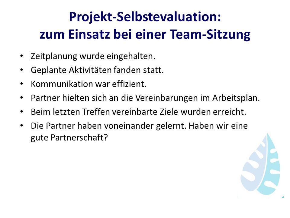 Projekt-Selbstevaluation: zum Einsatz bei einer Team-Sitzung