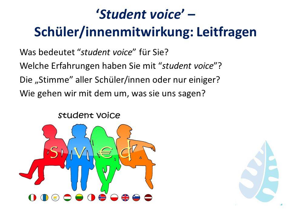 'Student voice' – Schüler/innenmitwirkung: Leitfragen
