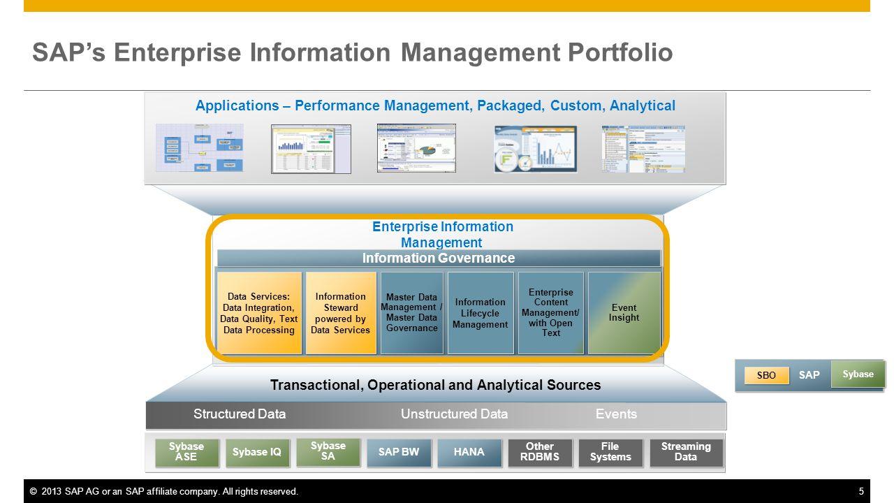 SAP's Enterprise Information Management Portfolio