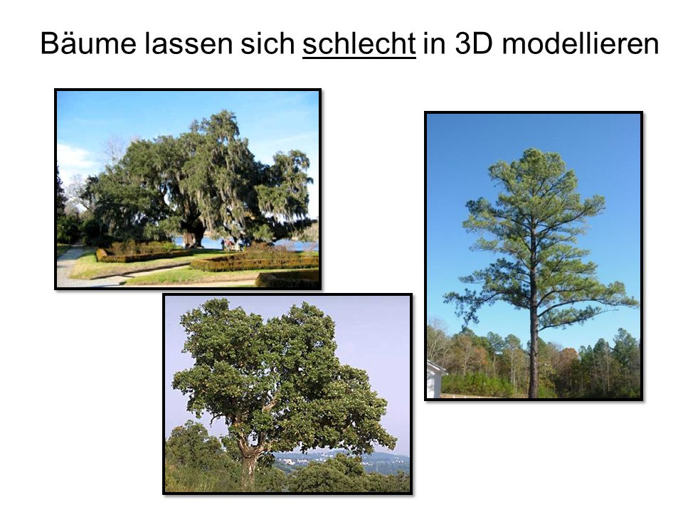 Bäume lassen sich schlecht in 3D modellieren