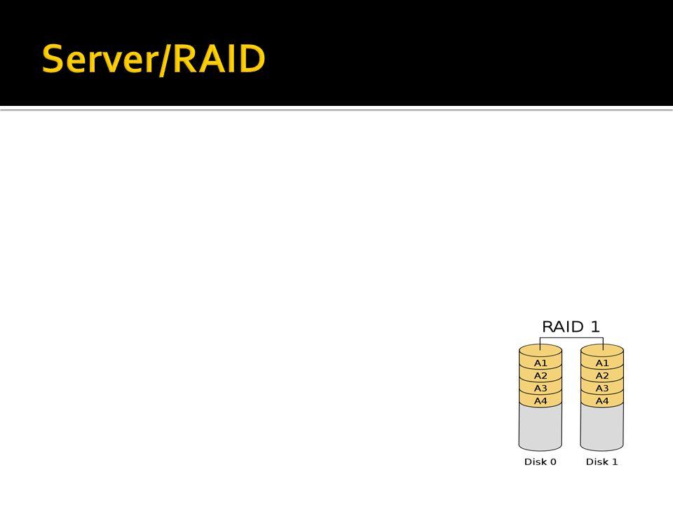 Server/RAID