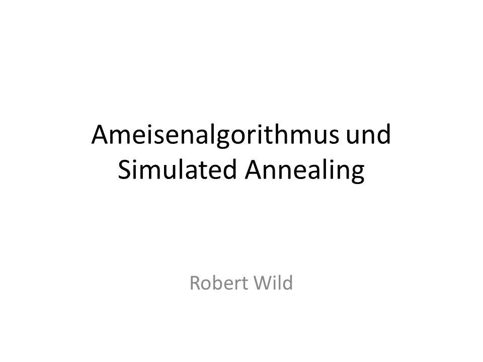 Ameisenalgorithmus und Simulated Annealing