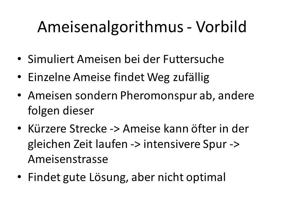 Ameisenalgorithmus - Vorbild