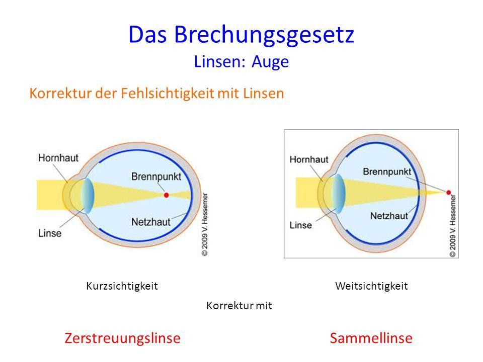 Das Brechungsgesetz Linsen: Auge