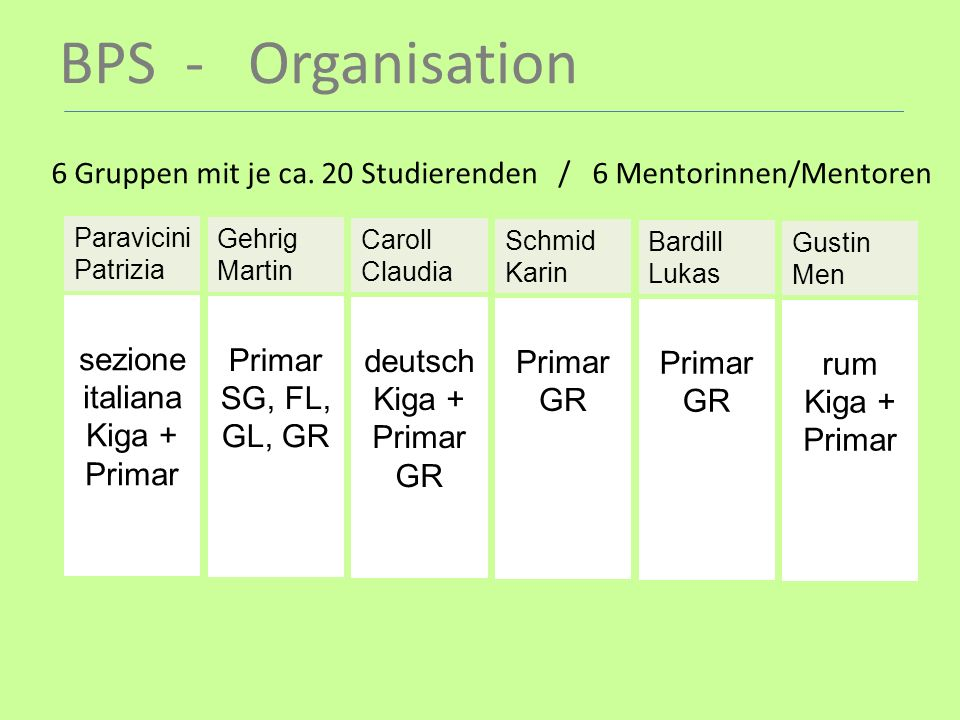 BPS - Organisation 6 Gruppen mit je ca. 20 Studierenden / 6 Mentorinnen/Mentoren. Paravicini Patrizia.