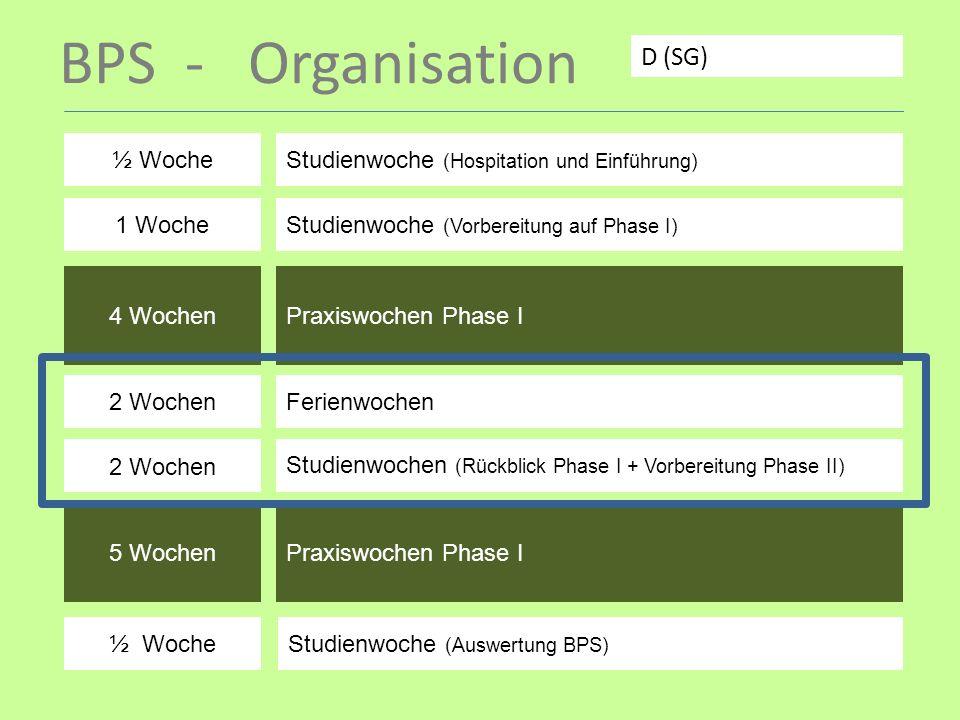 BPS - Organisation D (SG) ½ Woche