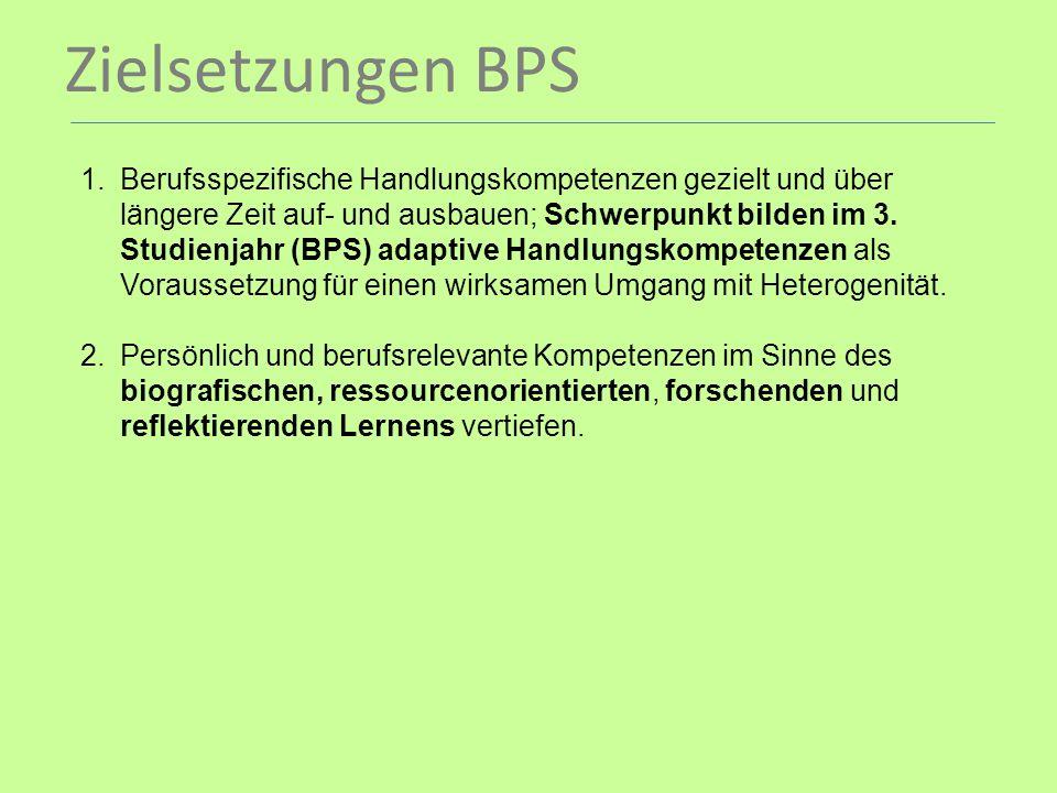 Zielsetzungen BPS