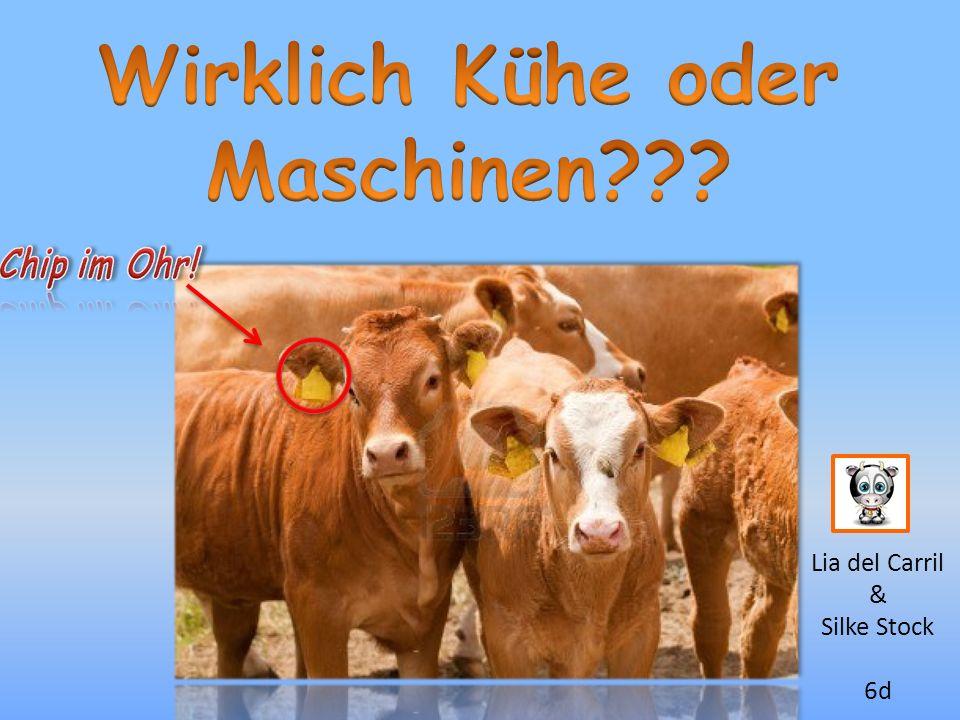 Wirklich Kühe oder Maschinen