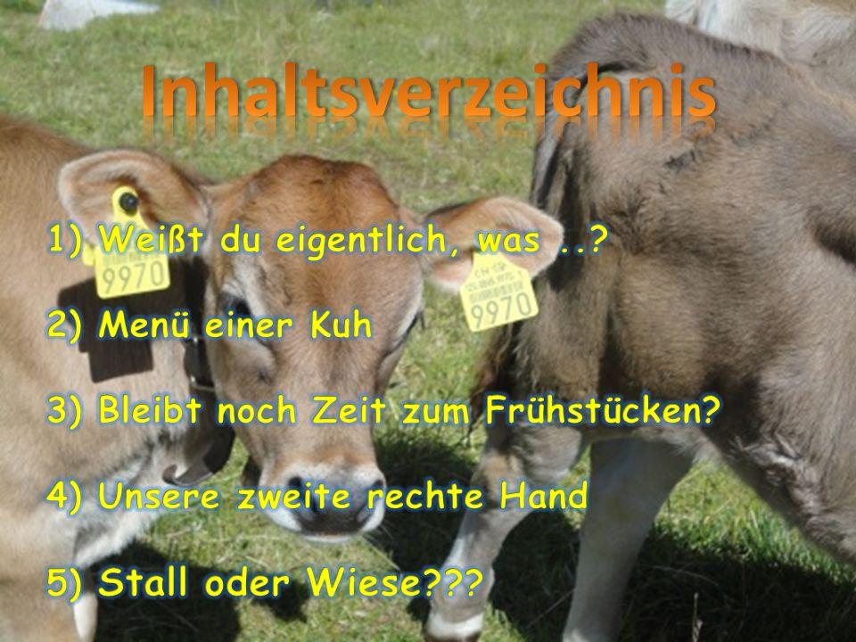 Inhaltsverzeichnis 1) Weißt du eigentlich, was .. 2) Menü einer Kuh