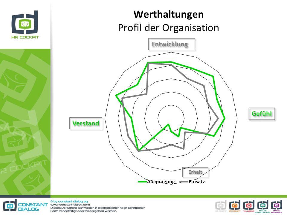 Werthaltungen Profil der Organisation