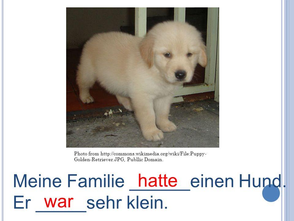 Meine Familie ______einen Hund. Er _____sehr klein. war