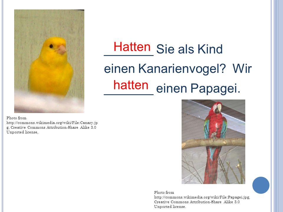 _______ Sie als Kind einen Kanarienvogel Wir _______ einen Papagei.