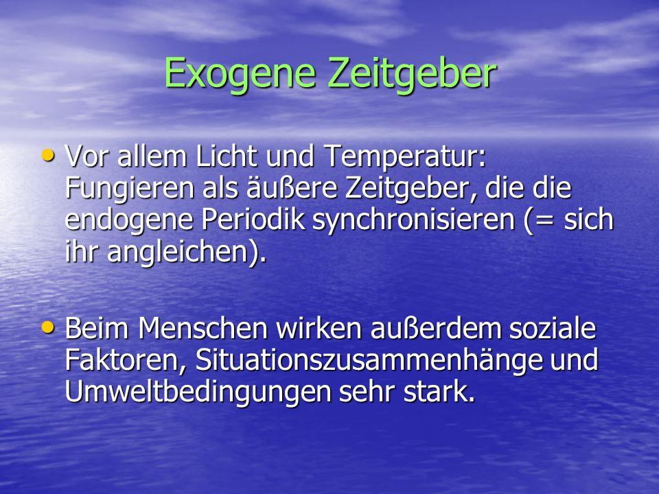 Exogene Zeitgeber Vor allem Licht und Temperatur: Fungieren als äußere Zeitgeber, die die endogene Periodik synchronisieren (= sich ihr angleichen).