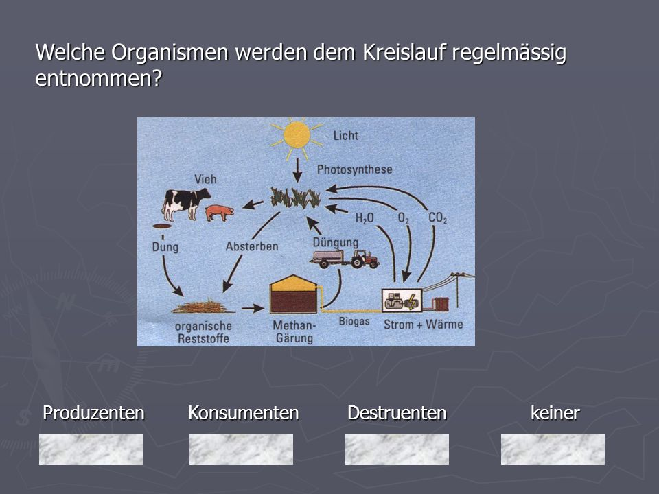 Welche Organismen werden dem Kreislauf regelmässig entnommen