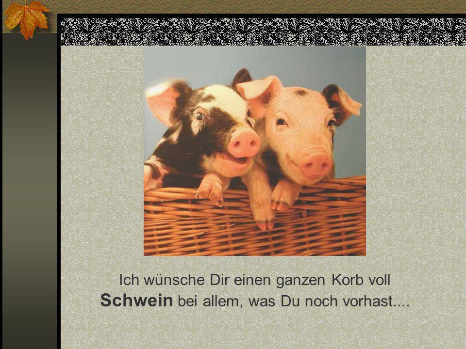 Ich wünsche Dir einen ganzen Korb voll Schwein bei allem, was Du noch vorhast....
