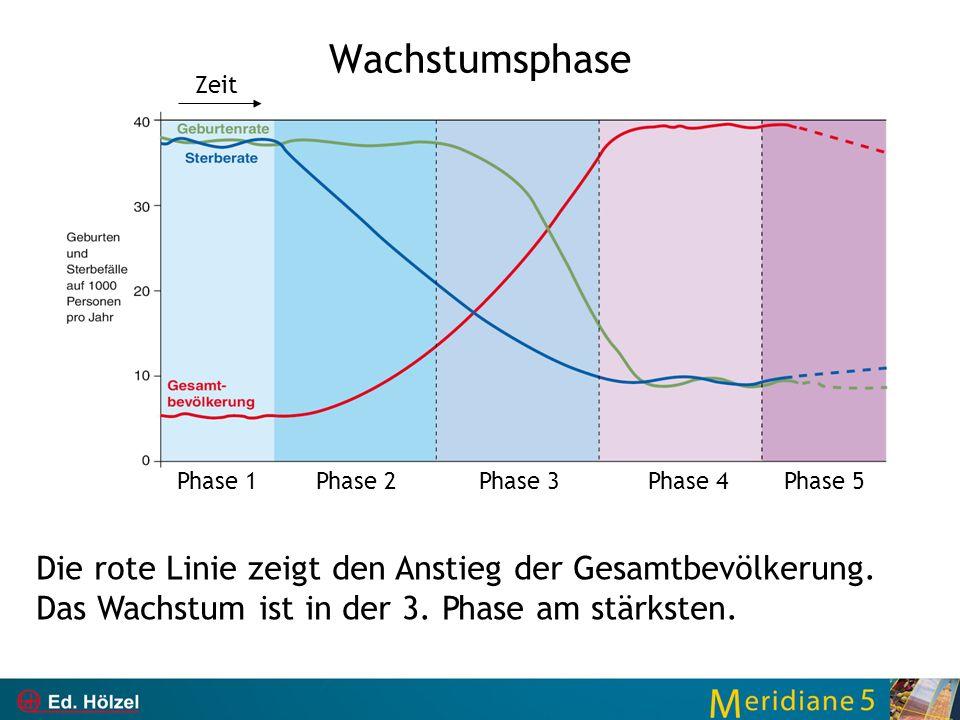 Wachstumsphase Zeit. Phase 1. Phase 2. Phase 3. Phase 4. Phase 5.