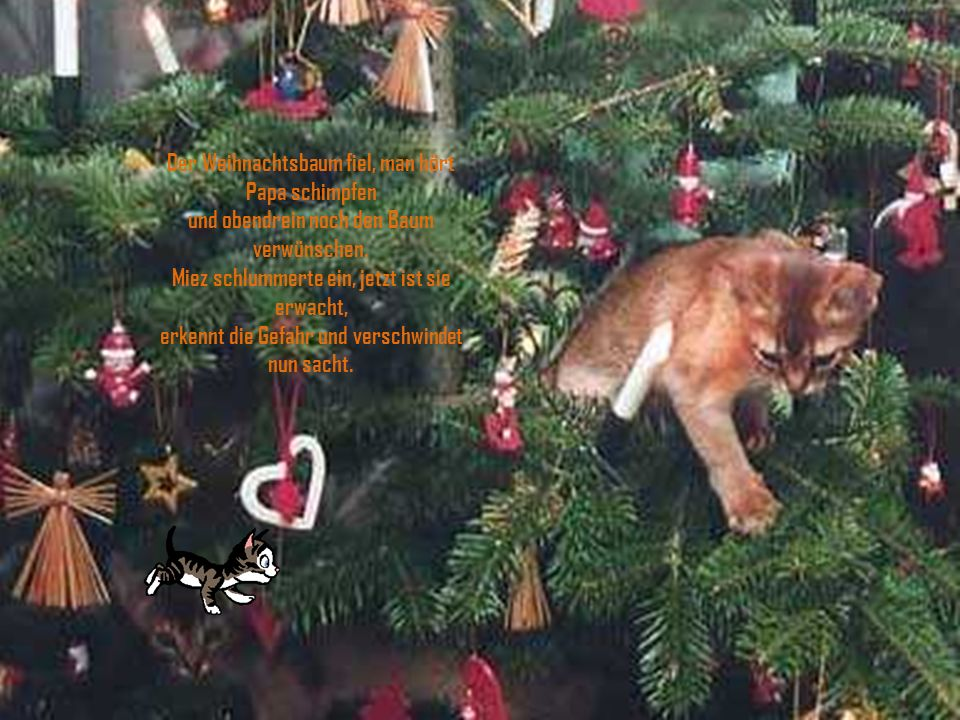 Der Weihnachtsbaum fiel, man hört Papa schimpfen und obendrein noch den Baum verwünschen.