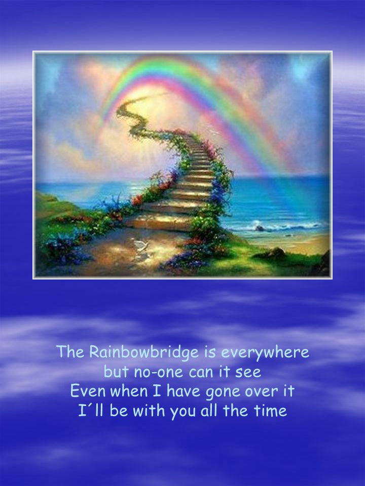 The Rainbowbridge is everywhere but no-one can it see