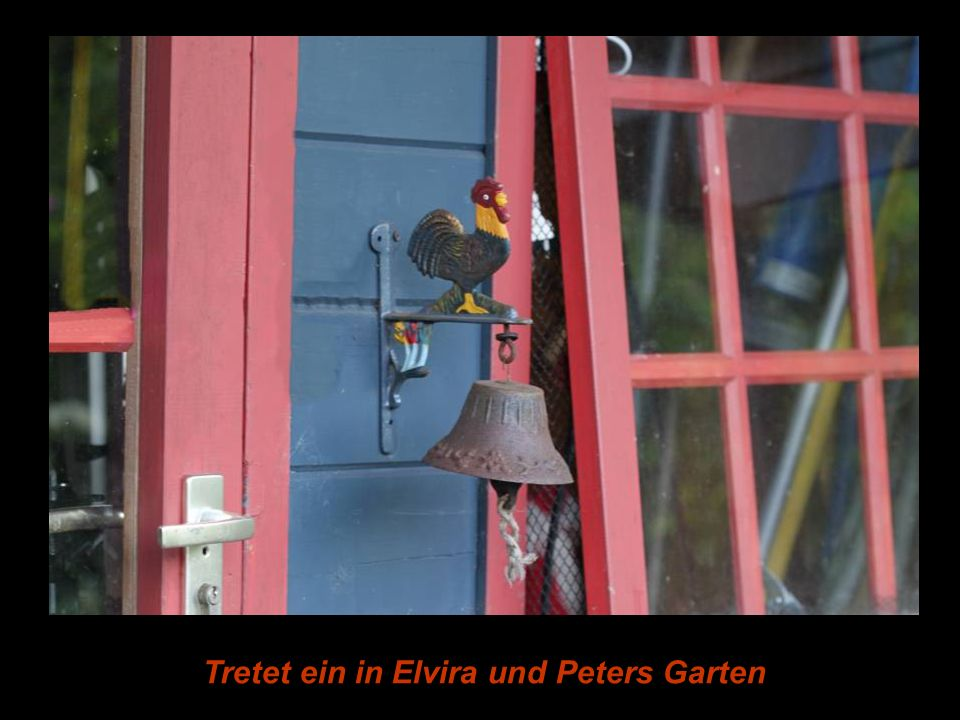 Tretet ein in Elvira und Peters Garten