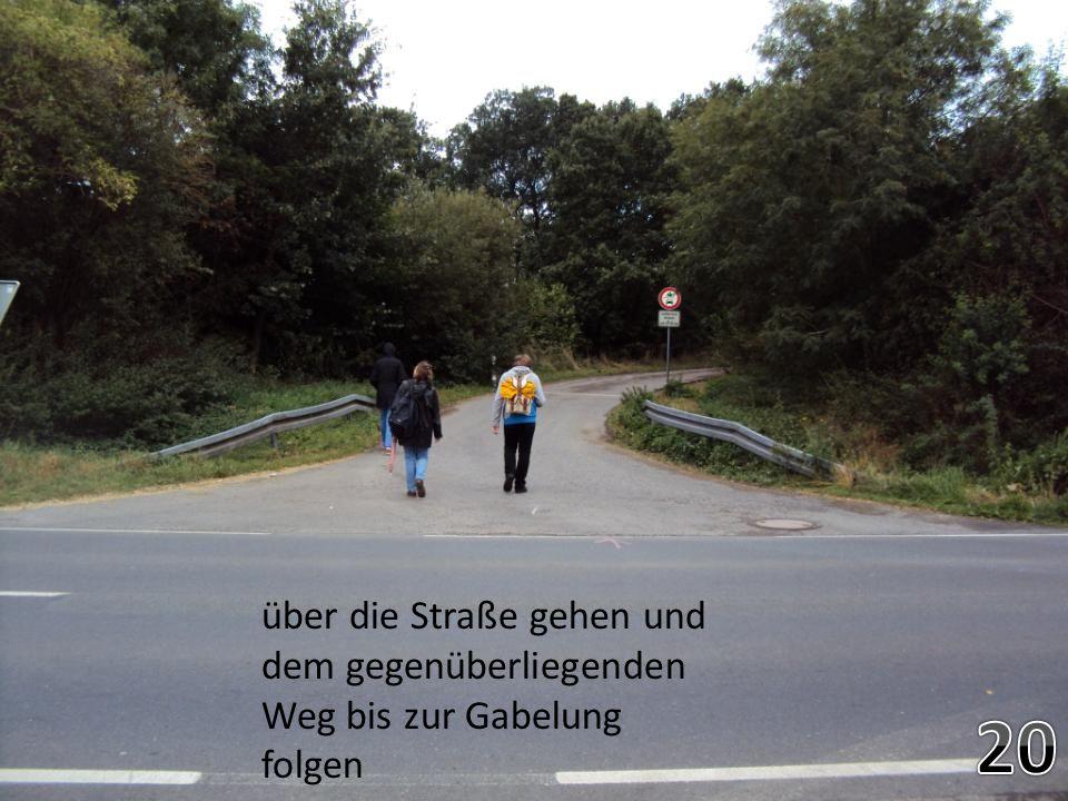 über die Straße gehen und dem gegenüberliegenden Weg bis zur Gabelung folgen
