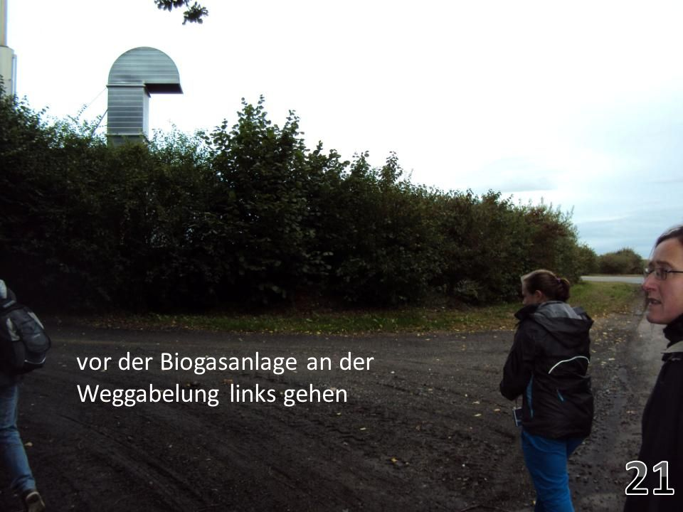 vor der Biogasanlage an der Weggabelung links gehen
