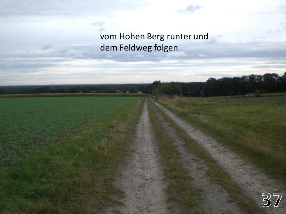 vom Hohen Berg runter und dem Feldweg folgen