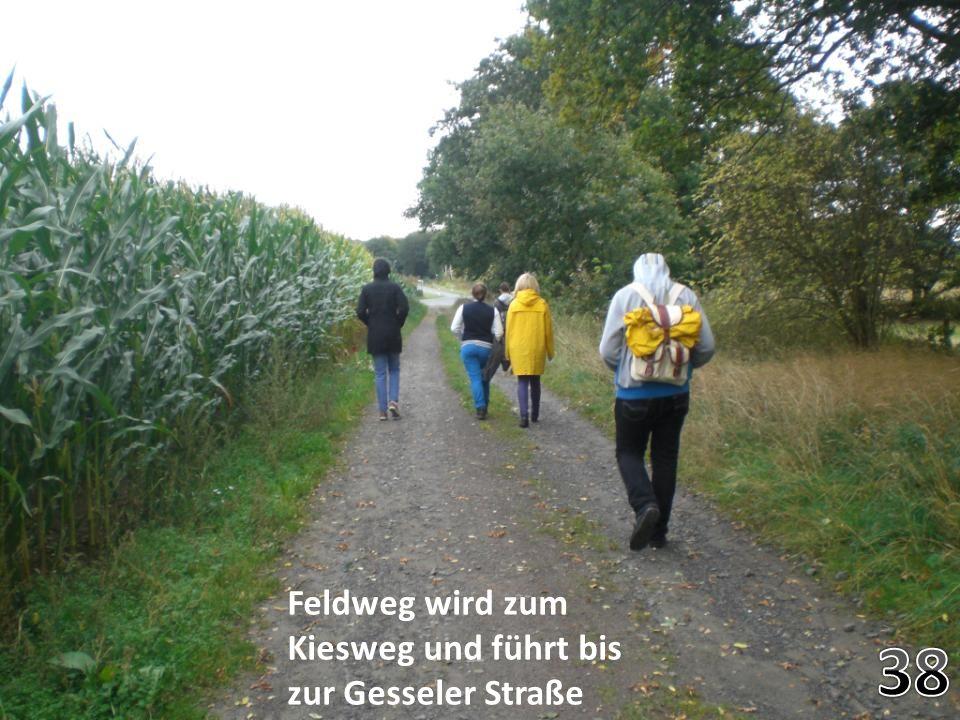 Feldweg wird zum Kiesweg und führt bis zur Gesseler Straße