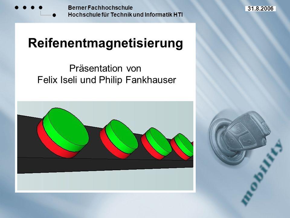Reifenentmagnetisierung