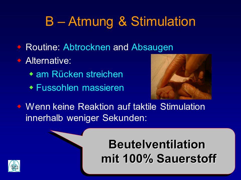 B – Atmung & Stimulation