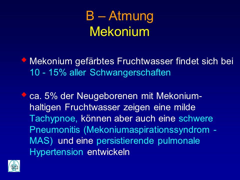 B – Atmung Mekonium. Mekonium gefärbtes Fruchtwasser findet sich bei 10 - 15% aller Schwangerschaften.
