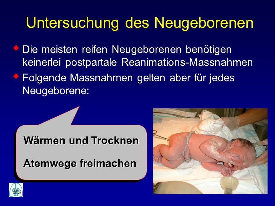Untersuchung des Neugeborenen
