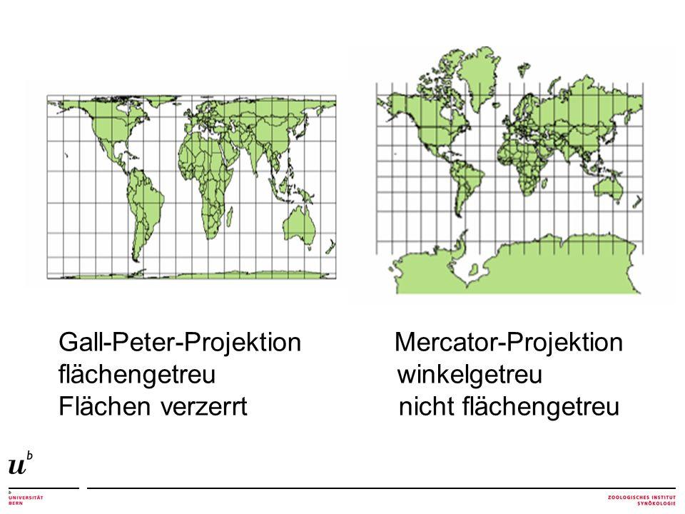Gall-Peter-Projektion Mercator-Projektion