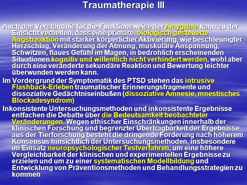 Traumatherapie III