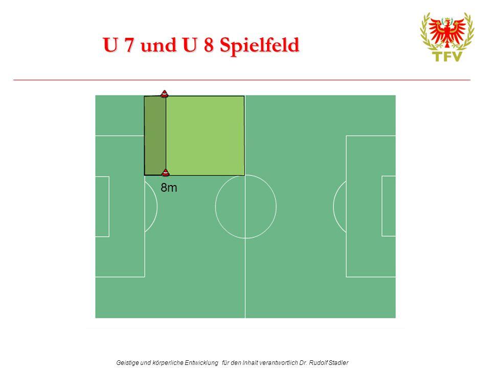 U 7 und U 8 Spielfeld 8m