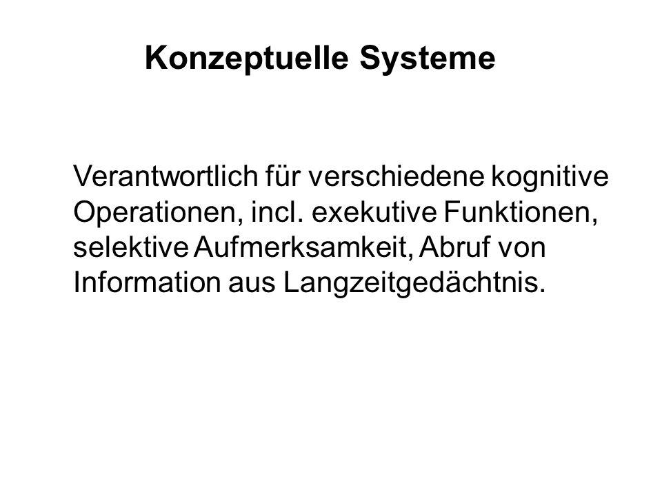 Konzeptuelle Systeme