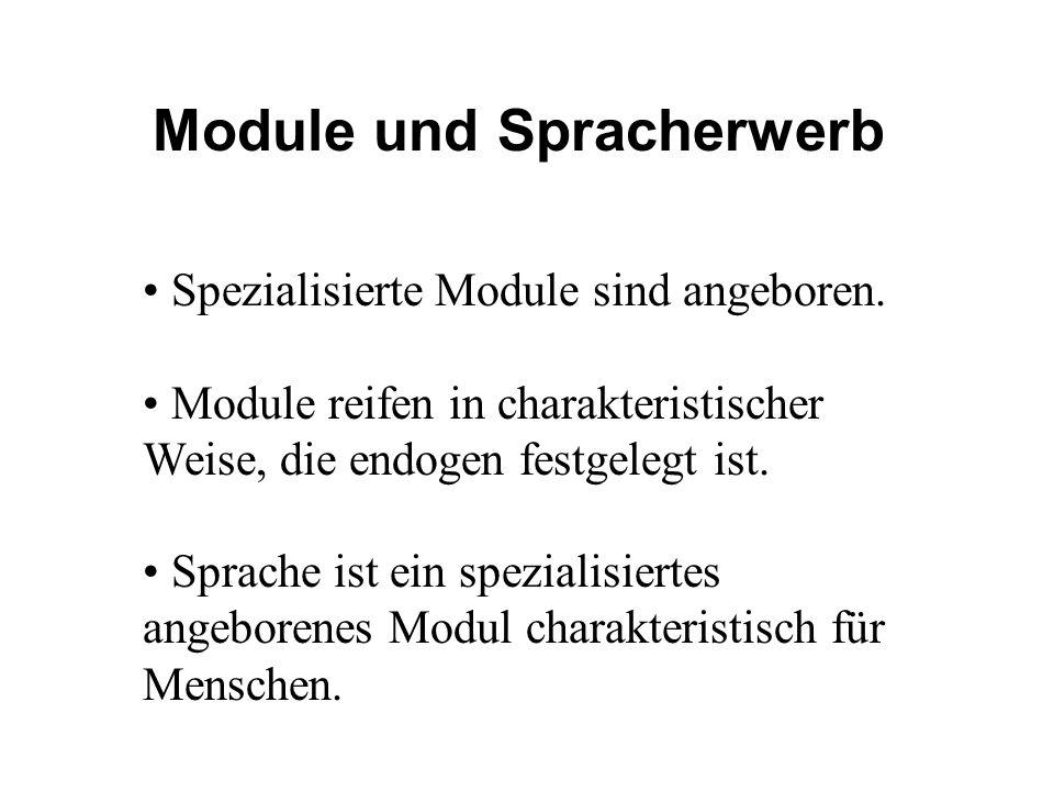 Module und Spracherwerb