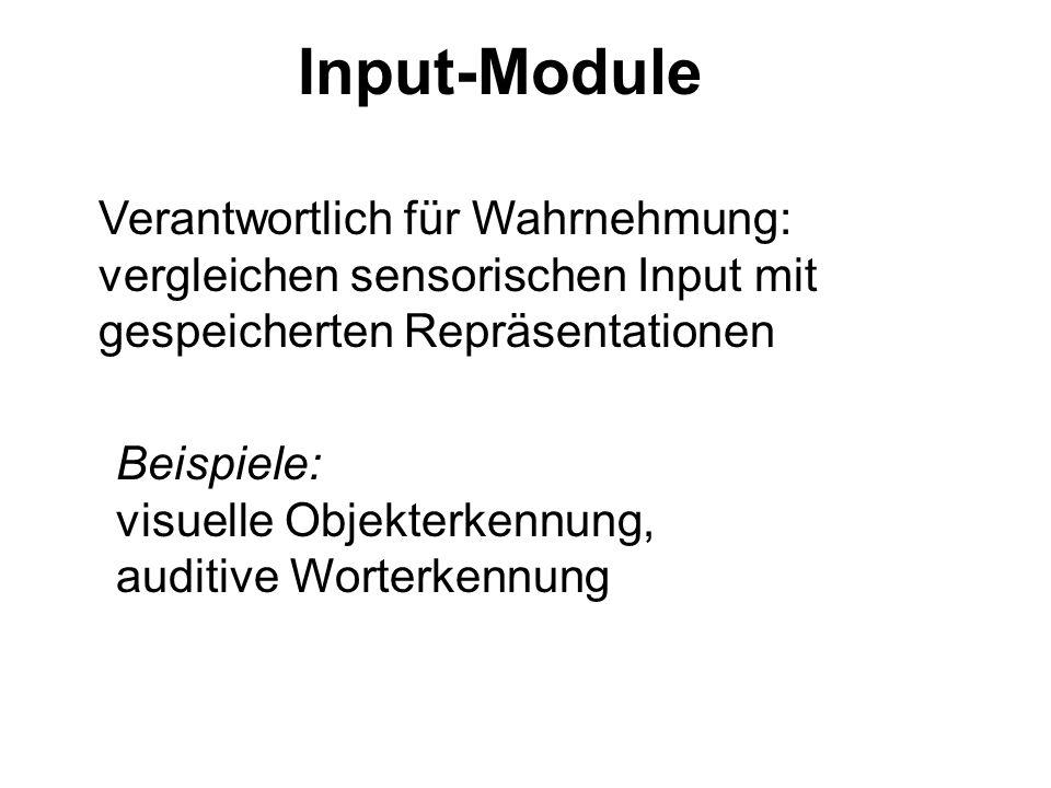 Input-Module Verantwortlich für Wahrnehmung: vergleichen sensorischen Input mit gespeicherten Repräsentationen.