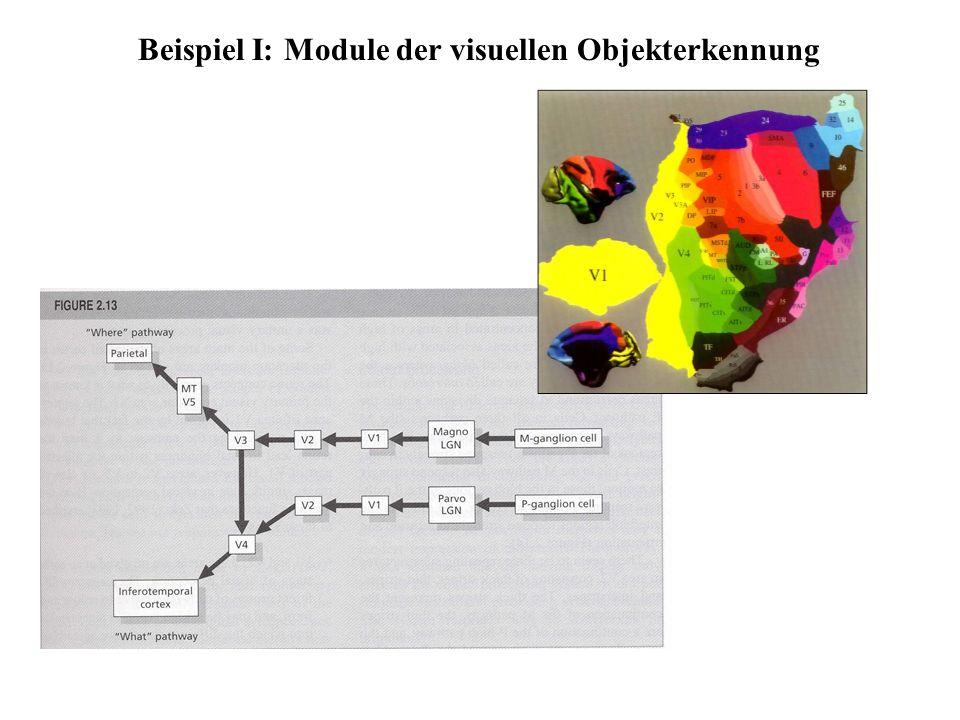 Beispiel I: Module der visuellen Objekterkennung
