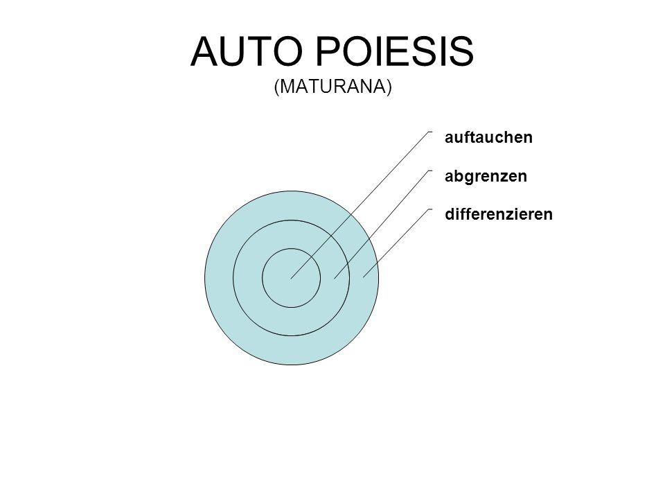 AUTO POIESIS (MATURANA)