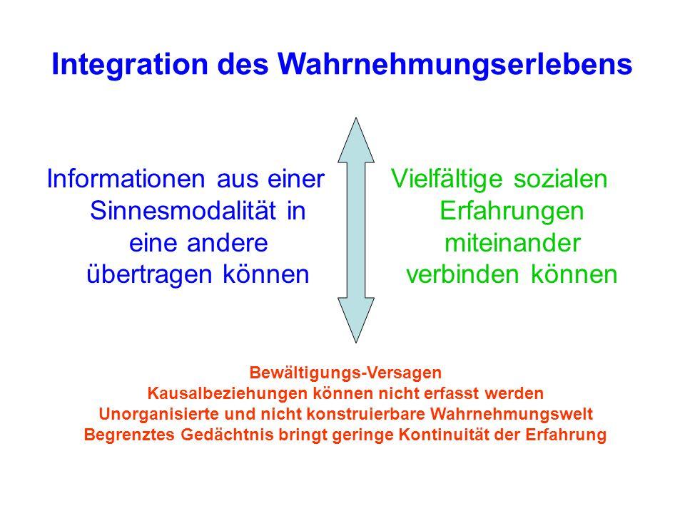 Integration des Wahrnehmungserlebens
