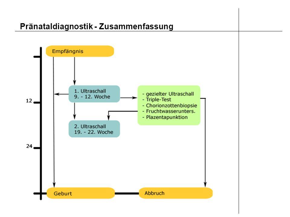 Pränataldiagnostik - Zusammenfassung