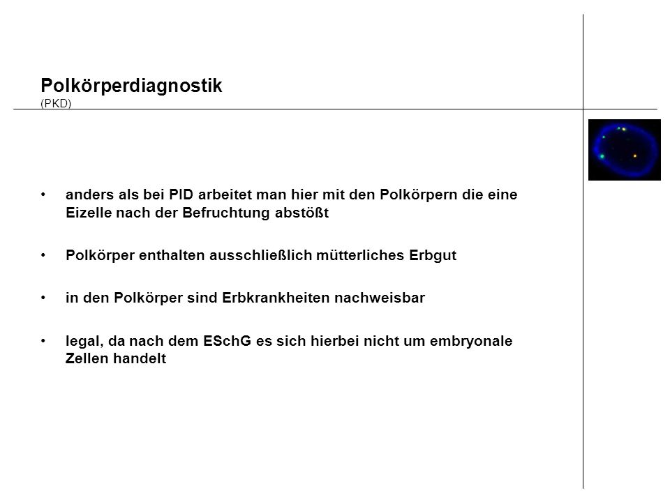 Polkörperdiagnostik (PKD)