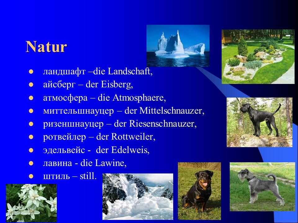 Natur ландшафт –die Landschaft, айсберг – der Eisberg,