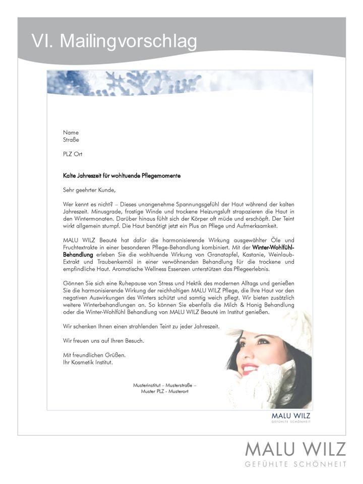 VI. Mailingvorschlag