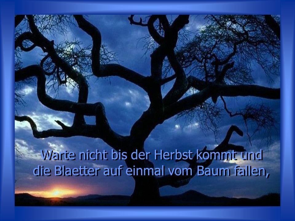 Warte nicht bis der Herbst kommt und die Blaetter auf einmal vom Baum fallen,