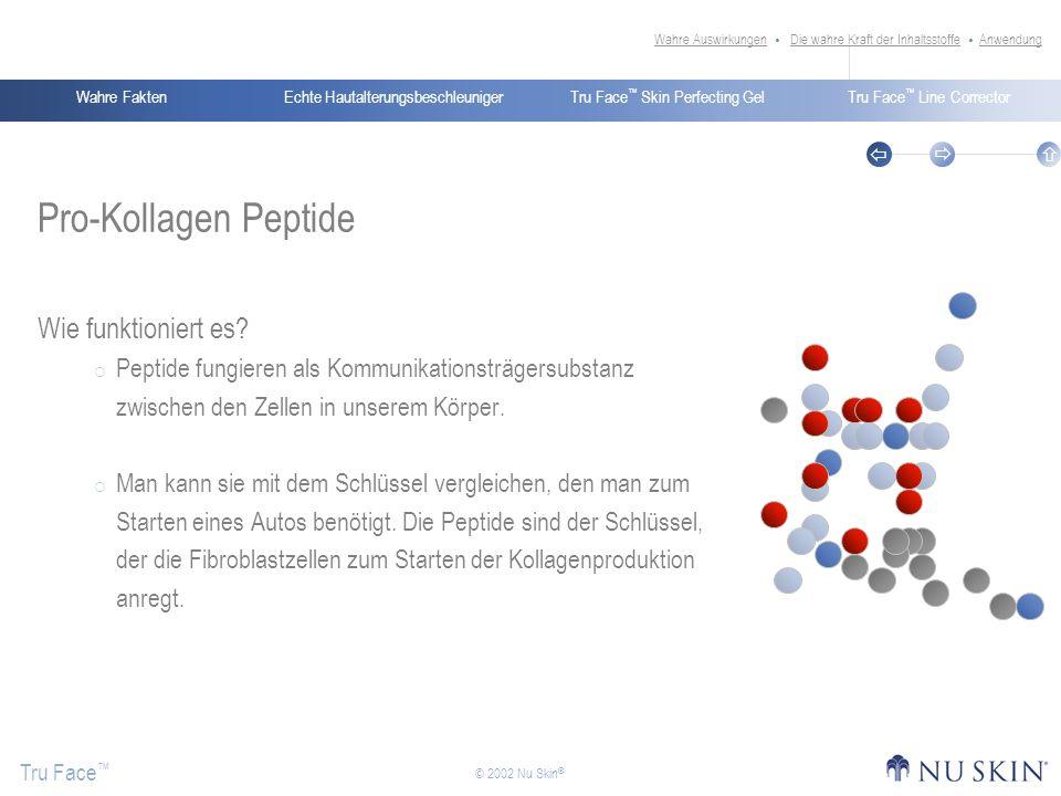 Pro-Kollagen Peptide Wie funktioniert es